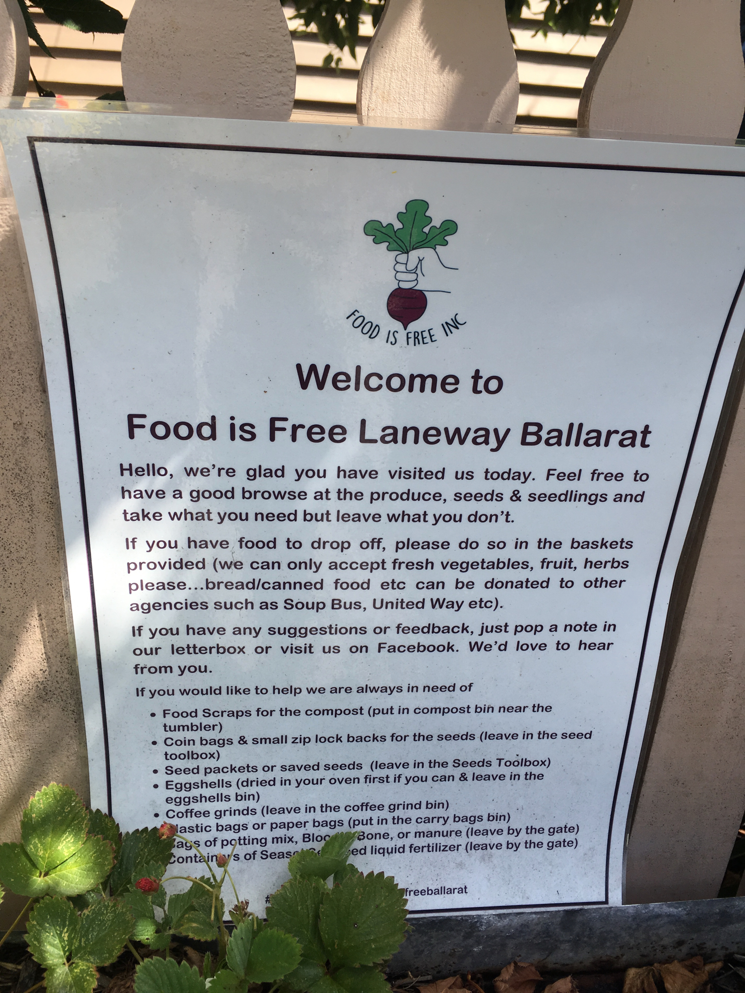 Ballarat, Australia: the Food Is Free Laneway (or at least